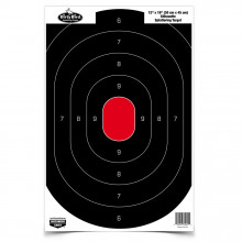 "BIRCHWOOD CASEY DIRTY BIRD 12"" x 18"" SILHOUETTE TARGET"